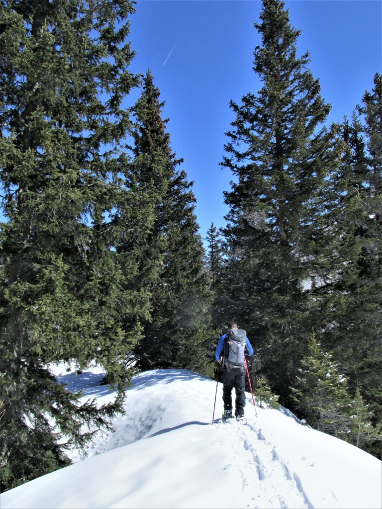 best conditions for snowshoeing